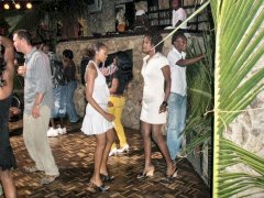 Jungleparty 2009